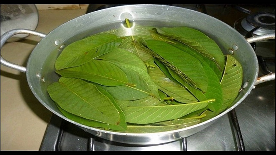 guava leaves Guavas and guava leaves are particularly high in vitamin c and contain several different vitamins and nutrients that provide health benefits when added to your diet.