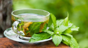 Green Tea – Is It Really Healthy