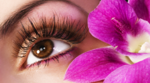 Eye care needs – Beneficial Food for eyes