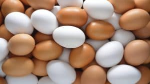 Eggs- Are they good or bad for health