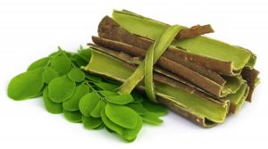 THE TRUTH ABOUT MORINGA LEAVES AND IT'S HEALTH BENEFITS