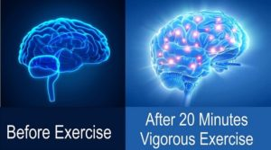 Boosting BRAIN Performance by doing SHORT TERM EXERCISE
