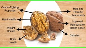 Walnuts : Boon to mankind!