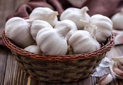 TOP 5 HEALTH BENEFITS OF RAW GARLIC