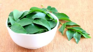 THE ROLE OF CURRY LEAVES IN DIABETES MANAGEMENT