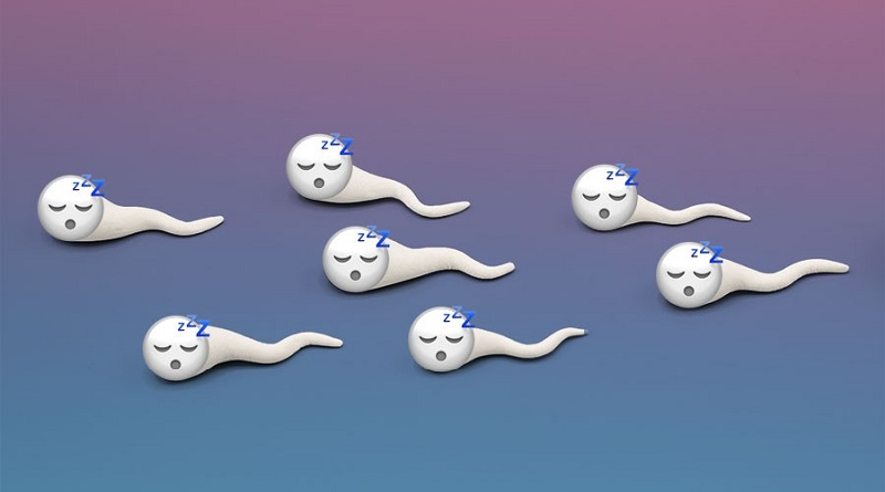 BAD SPERM COULD WIPE OUT HUMANS